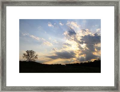 Never Alone Framed Print by Mark J Seefeldt