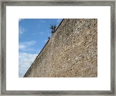 Never-ending Wall Of Dreams Framed Print