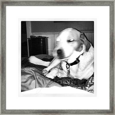 Never Too Early For Artistic Pictures Framed Print