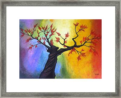 New Blossoms In Spring Framed Print by Rejeena Niaz