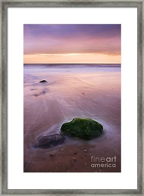 New Day Framed Print by Martin Williams