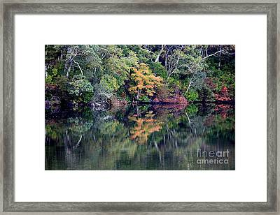 New England Fall Reflection Framed Print by Carol Groenen