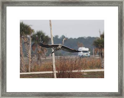 New Furniture For The Home Framed Print by Jeanne Andrews