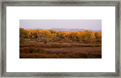 New Mexican Fall Framed Print by Denice Breaux