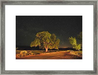 New Mexico Stars Framed Print by Mark Fesgen