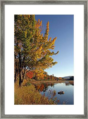 New Mills Meadow Pond Framed Print by Juergen Roth