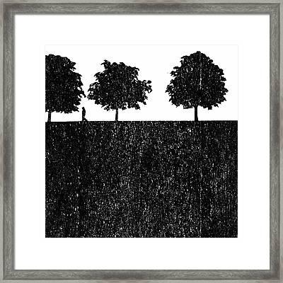 New Stoneage Framed Print by Steve K