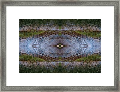 New Vision Framed Print by Ed Kelley