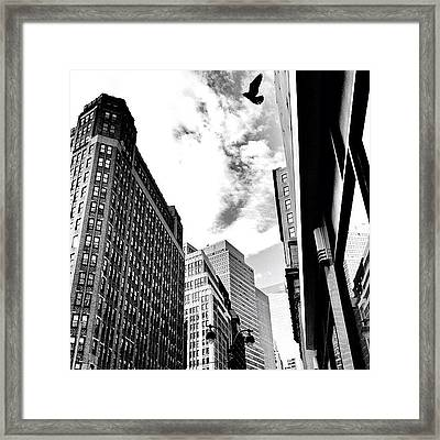 New York City - In Flight Framed Print