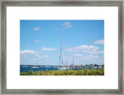 Newport Ri Summertime Framed Print
