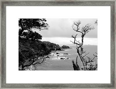 Ngunguru Bay New Zealand Framed Print
