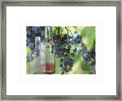 Niagara Peninsula Wine Country Framed Print by Bob Salo