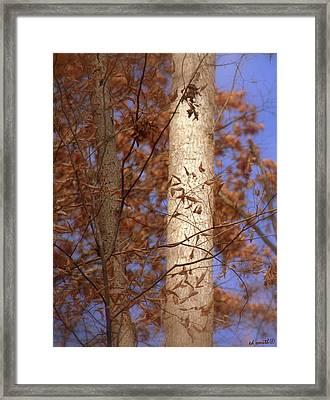 Nice Couple Framed Print by Ed Smith