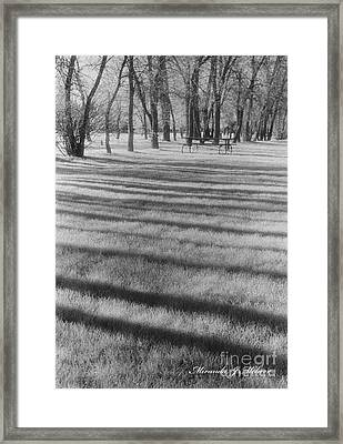 Nice Day For A Picnic Framed Print by Miranda Mehrer