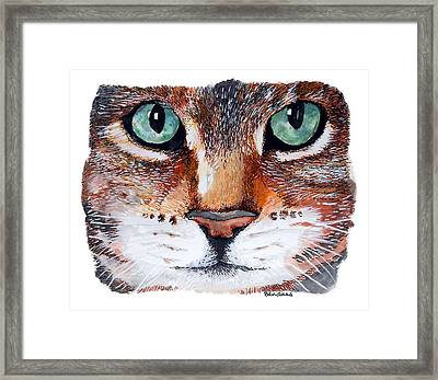 Framed Print featuring the painting Nice Kitty by Terry Banderas