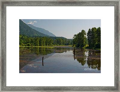 Framed Print featuring the photograph Nicomen Slough 2 by Rod Wiens