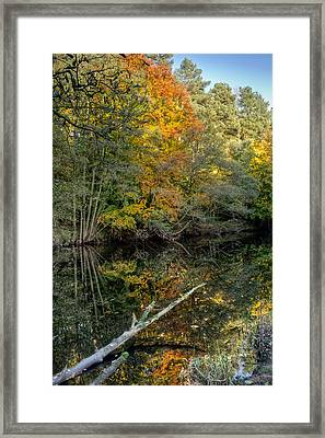 Nidd Gorge Autumn Reflections Framed Print by Chris Frost