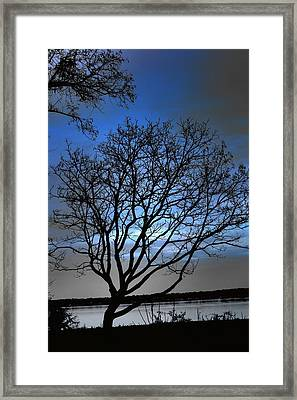 Night On The River Framed Print by Dan Stone