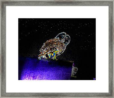 Night Owl Framed Print by David Lee Thompson