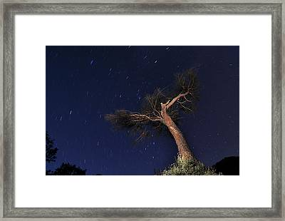 Night Photography With Traces Of Circumpolar Framed Print by Creative Images