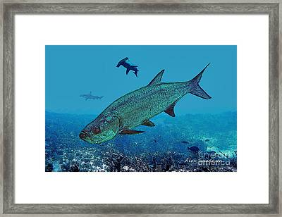 Night Prowlers Framed Print