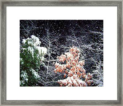 Night Snow 2 Framed Print by Sandi OReilly