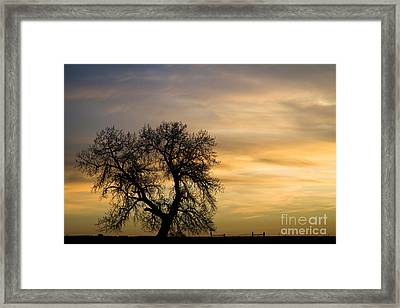 Night To Day Framed Print