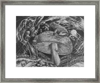 Night Toad Framed Print