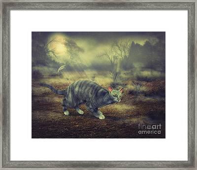 Night Walk Framed Print by Jutta Maria Pusl