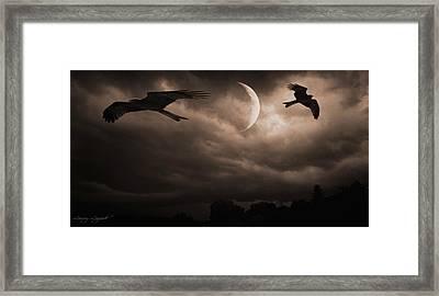 Nightly Flight Framed Print by Lourry Legarde