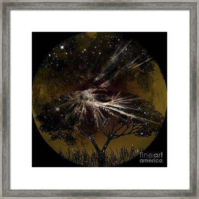 Nightscape Framed Print