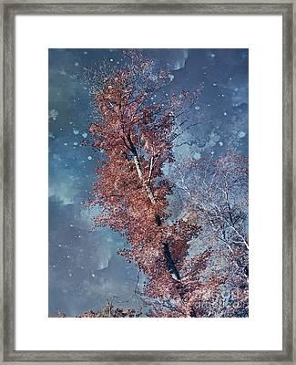 Nighty Tree Framed Print by Aimelle