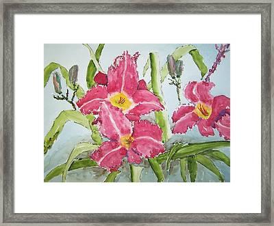 Nine Blooms Framed Print by James Cox
