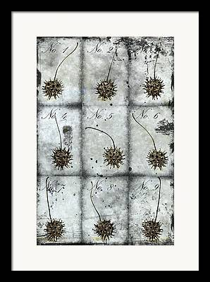 Earth Scientific Framed Prints