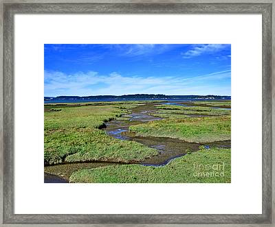 Nisqually Estuary At Low Tide Framed Print by Sean Griffin