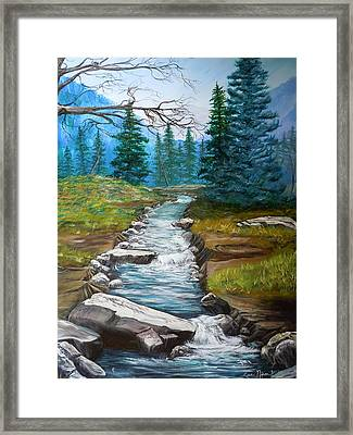 Nixon's Bubbling Running Creek Framed Print