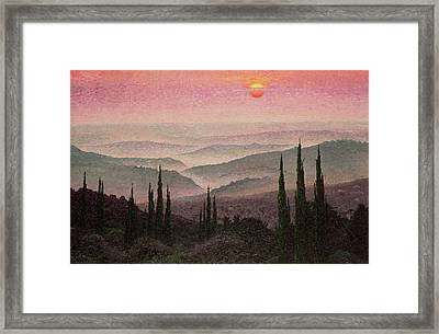 No. 126 Framed Print by Trevor Neal