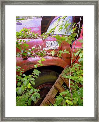 No. 3025 Framed Print