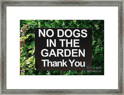 No Dogs In The Garden Thank You Framed Print by Andee Design