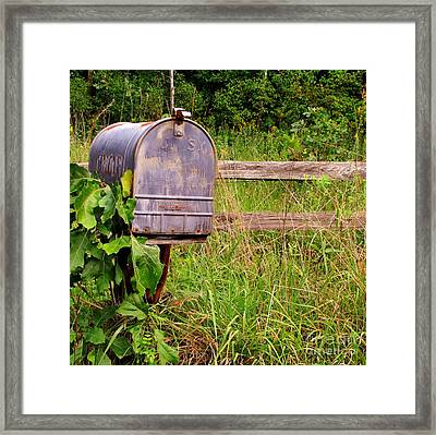 No Mail Today Framed Print by Marilyn Smith