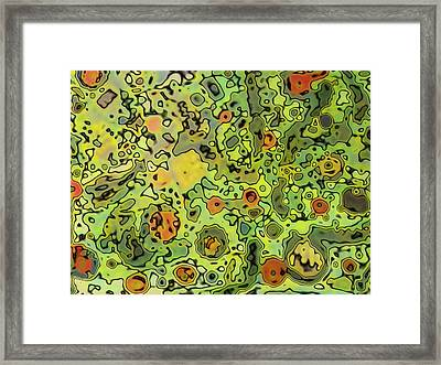 No Name Framed Print by HollyWood Creation By linda zanini