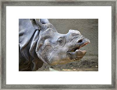 No One Ever Listens Framed Print by Fraida Gutovich