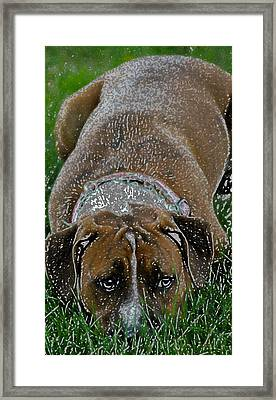 No One Wants To Play Framed Print by Rebecca Frank