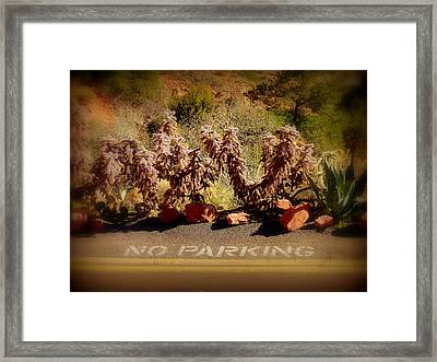 No Parking Framed Print by Cindy Wright