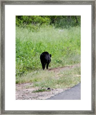 No Picture Today Said The Boar Framed Print