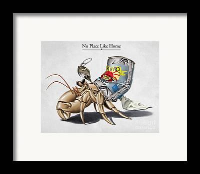 Hermit Crab Framed Prints