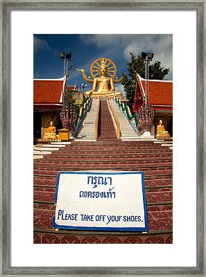 No Shoes Framed Print by Adrian Evans