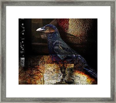 No Title Framed Print by Janet Kearns