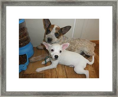 No Worries...i'm Here Framed Print by Camille Reichardt