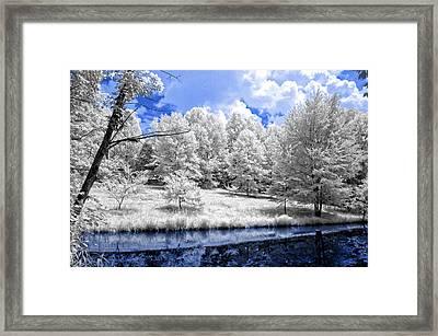 Nobob Pond Ir Framed Print by Amber Flowers